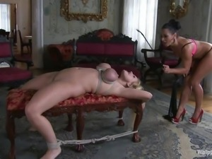 female bourgeois domination
